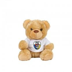 Teddy mit Shirt incl....